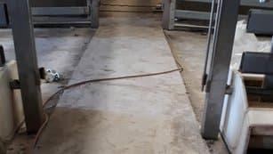 podlaha ošipárne (prasačníka) je extrémne namáhaná